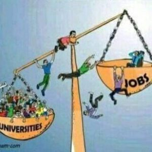 De l'Université au chômage